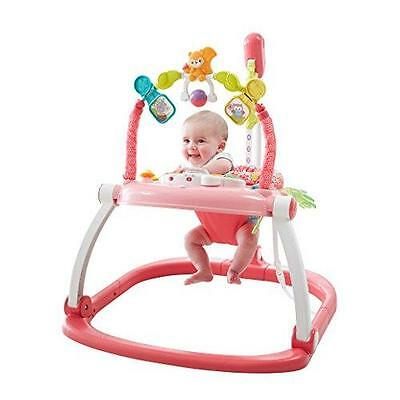 Fisher-Price Floral Confetti SpaceSaver Jumperoo New