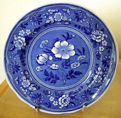 Spode Blue Room Collection Plate Botanical