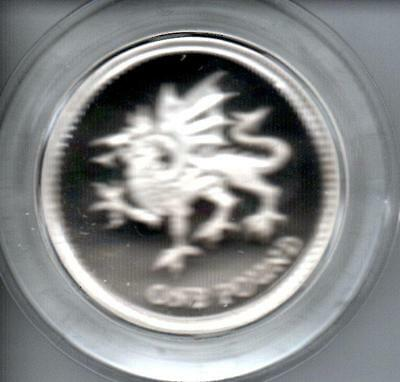 Welsh Design Silver Proof Uk 1995 £1 Coin Boxed