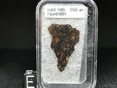 NWA1465 Official CV3-an Carbonaceous Meteorite - 1465-0001 - THIN SECTION-RARE