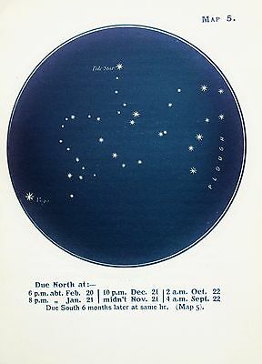 Antique Print Star Chart - Constellations - Celestial - Astrology - Astronomy 5
