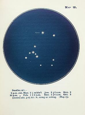 Antique Print Star Chart - Constellations - Celestial - Astrology - Astronomy 15