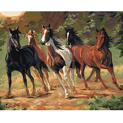 16X20'' Running Horses DIY Acrylic Paint By Number Kit Oil Painting On Canvas