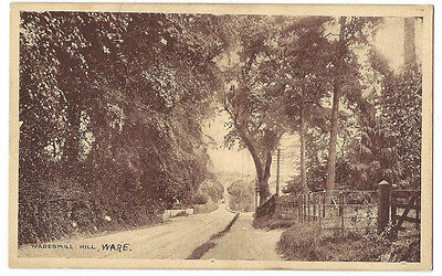 WARE Herts, Wadesmill Hill, Old Postcard by JN Lambert, Unposted