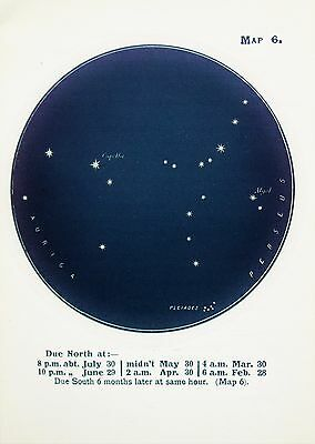 Antique Print Star Chart - Constellations - Celestial - Astrology - Astronomy 6