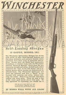 Antique 1910's WINCHESTER Model 1911 12 Gauge SHOTGUN Duck Hunting Gun Art Ad