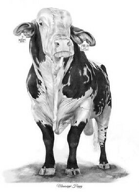 """Mississippi Hippy"" 5X7 Mini Print by ROBYN COOK PENCIL ARTIST~PBR Bull Series~"