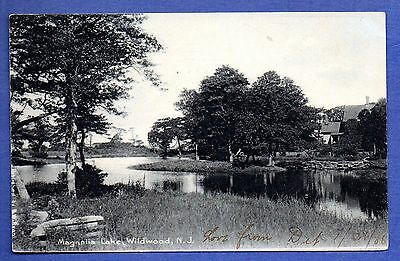 Magnolia Lake, Wildwood, New Jersey 1906 Postcard