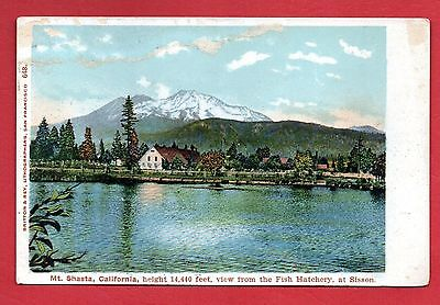Mt. Shasta, View from the Fish Hatchery, Sisson, California Postcard