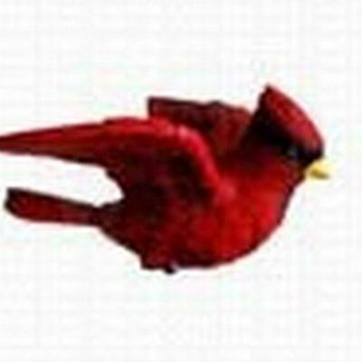 Cardinal Window Magnet Design is Stylish and Innovative Satisfaction Ensured