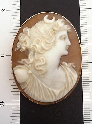 Victorian 10 K YG  Large Vintage Shell Cameo Early 1900s Pin.