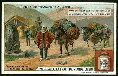Japanese Horse Wearing Leather Sandals Horse Shoes 1905 Trade Ad Card