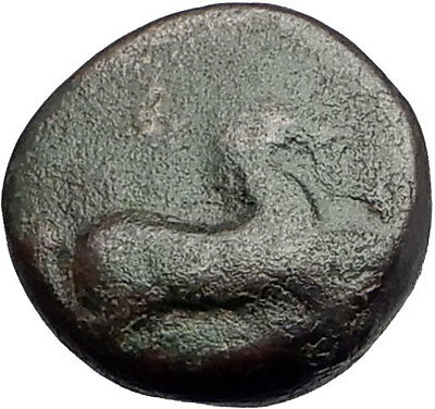 MARONEIA Thrace 400BC Authentic Ancient Greek Coin w HORSE & WINE GRAPES i61883