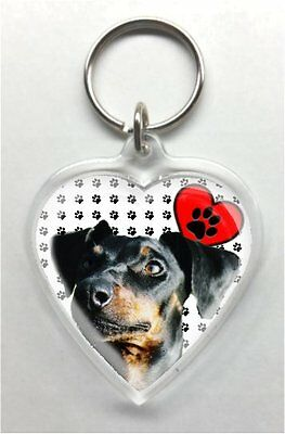 Manchester Terrier Heart Shaped acrylic Key Ring/chain