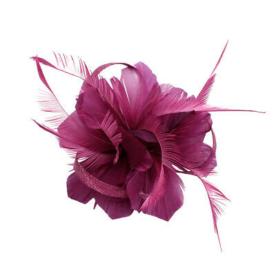 Retro Woman Feather Fascinator 20s  Wedding Church Ascor Races Hair Clip