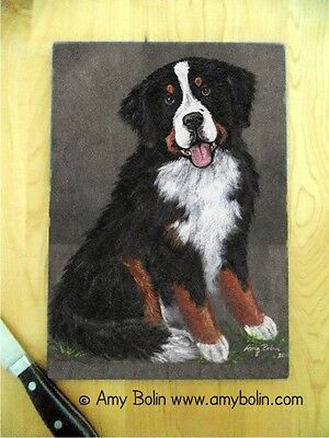 BERNESE MOUNTAIN  dog Small Glass CUTTING BOARD by Amy Bolin MERLIN