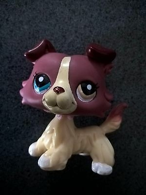 LPS LITTLEST PETSHOP PET SHOP dog chien colley 1262