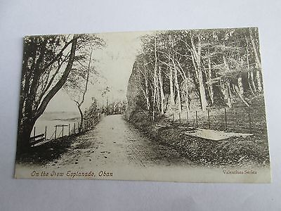 Postcard of On the New Esplanade, Oban (posted 1905 Valentine's)