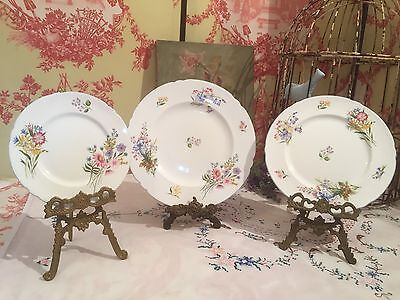 Shelley Wild Flowers Vintage Bone China Plates Dinner, Cake Plate & Sideplate