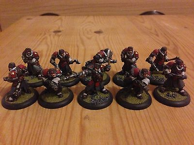 Well / Pro Painted Warmachine Khador Winter Guard