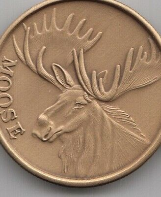 Personalized Bull Moose coin trophy hunt outfitters appreciation thank you gift