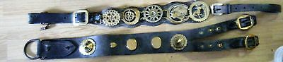 2 Sections of Vintage Horse Harness, Leather & Brass, Horses Brasses