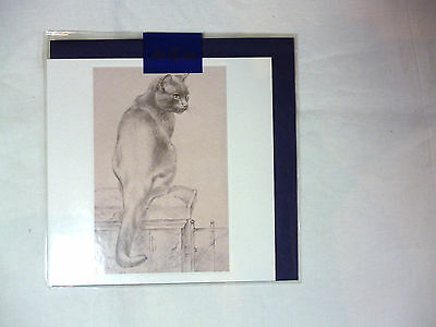 Print of beautiful fine drawing of a cat Blank  NEW in cello