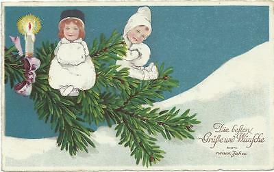 Marie Flatscher ( unsign)  Little ones white sit on fir branch