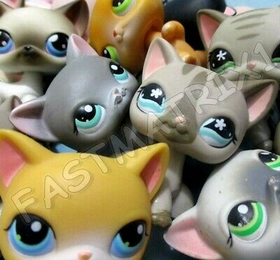 Littlest Pet Shop Lps Lot 2 Random Blemished Shorthair Siamese Cats Authentic