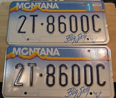 1994 Montana License Plate Pair Expired 2T 8600C