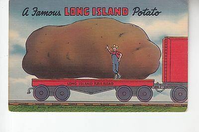 Exaggeration A Famous Long Island Potato Long Island NY