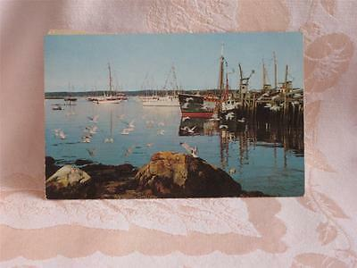 Chrome Yachts & Fishing Boats At Boothbay Harbor, Maine, Cool Stamp On Back
