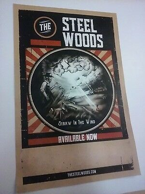 POSTER by The STEEL WOODS straw in the wind For the bands new tour album cd GIG