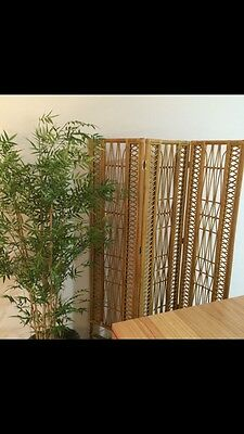 Cane Room Divider From Freedom