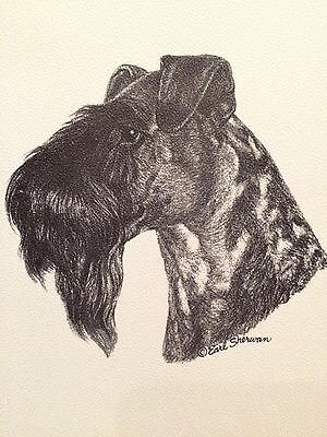 Vintage 1969 Kerry Blue Terrier Dog Portrait Note Cards NIB Earl Sherwan 10 card