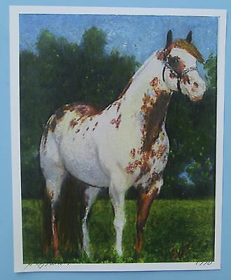 Paint Horse Painting Picture Print