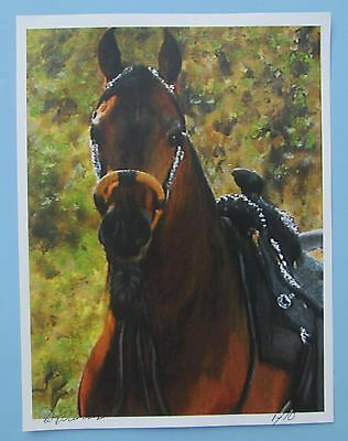 Arabian Horse Painting Picture Print