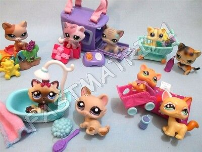 Littlest Pet Shop Lot 5 Random Pcs 2 Kitten Cats 3 Accessories BUY 3 GET 1 FREE