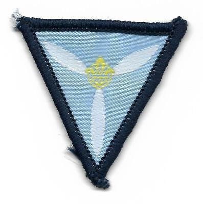 1515 N.z. Air Scout Scout Badge