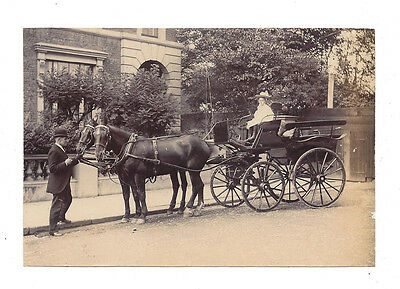 LONDON Victorian Child seated in a Horse Drawn Carriage - Antique Photo c1895