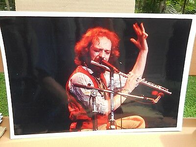 #10 Real Photo Jethro Tull Concert Color Photo 18x12