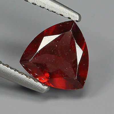 Precious 1.23 Ct Natural Africa ALMANDINE RED GARNET Trillion Gemstone !!