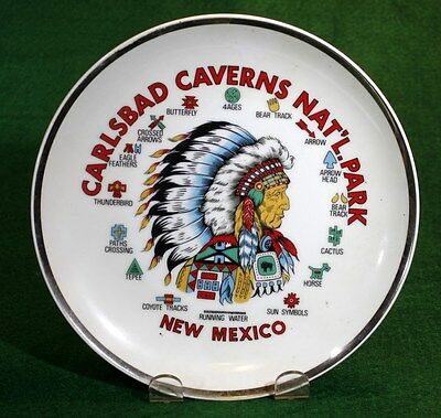 "NEW MEXICO ""CARLSBAD CAVERNS NAT'L. PARK"" Native American Souvenir Plate 1960s"