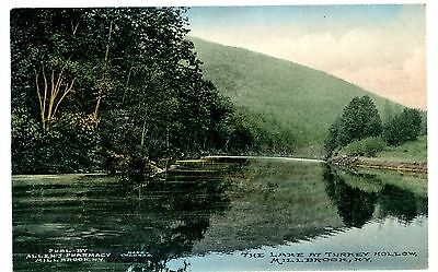 Millbrook NY -THE LAKE AT TURKEY HOLLOW- Handcolored Postcard