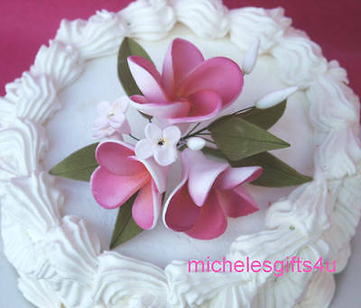 Sugar Gum Paste Hot Pink Plumeria Hawaiian Stephanotis Cake Flowers