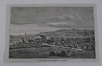 1885 magazine engraving ~ PLANTATION ON THE ISLAND OF ST. CROIX