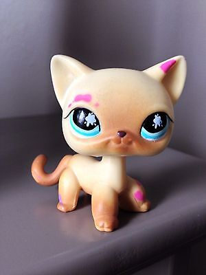 Littlest Petshop Lps Cat Chat Europeen