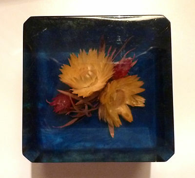 1950s LUCITE PAPERWEIGHT Souvenir Cape Of Good Hope South Africa National Flower