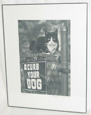 """Michael Deines Black & White Cat Photograph """"curb Your Dog"""" Framed Signed 2000"""