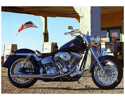 1998 1999 Titan Roadrunner RM Motorcycle Factory Photo ca7254